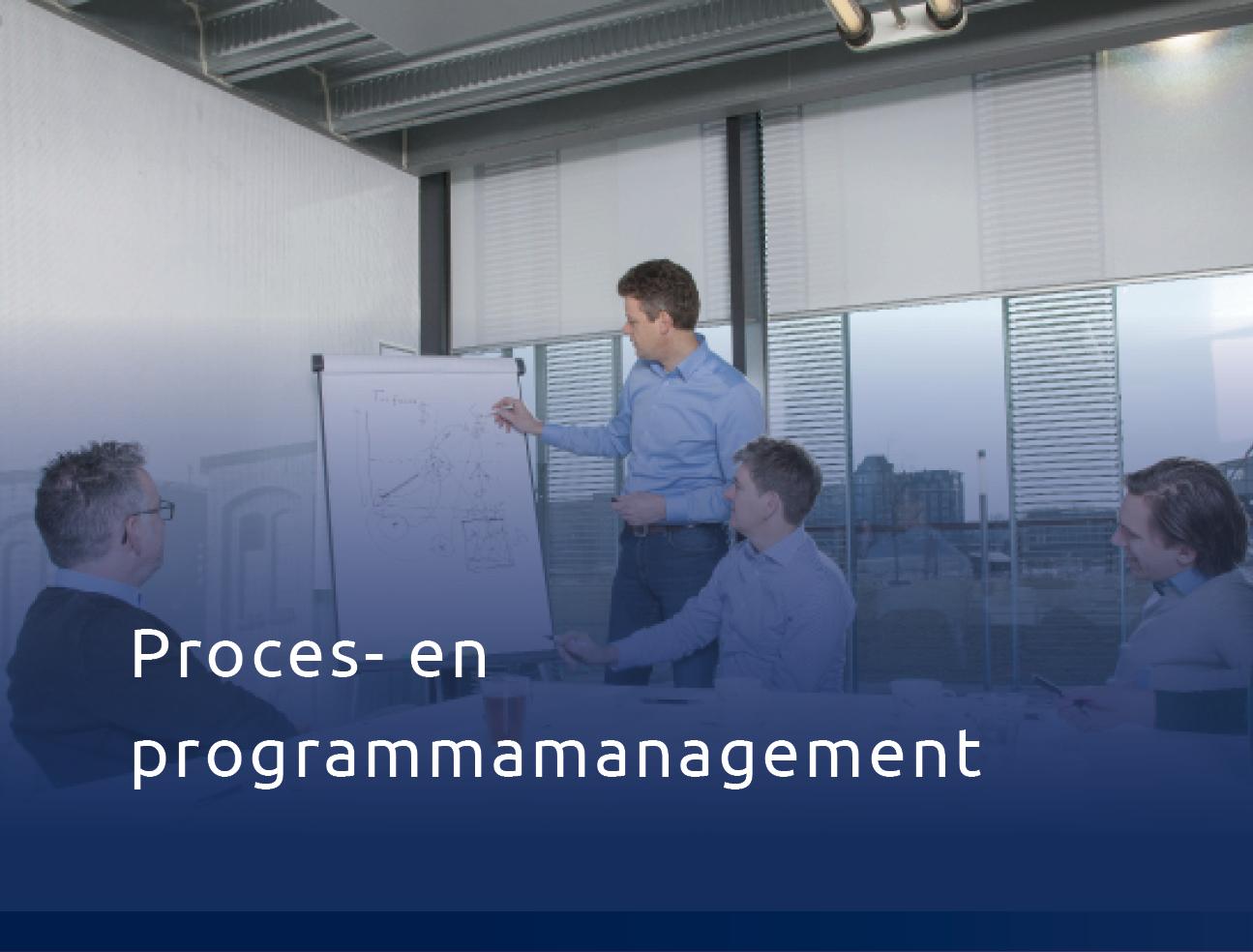 Procs En Programmamanagement